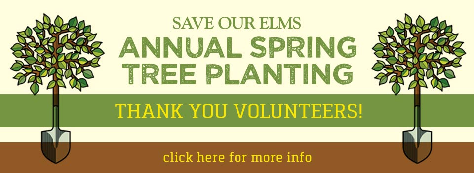 Annual Spring Tree Planting